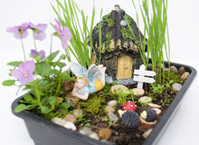 Load image into Gallery viewer, Fairy Garden