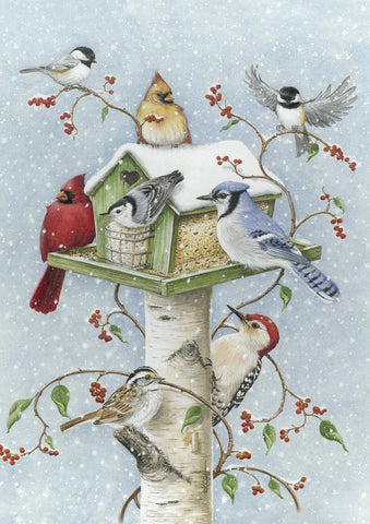 Winter Birds Image 1