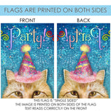 Party Cat Image 7