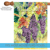 Vineyard Grapes-Welcome to the Finger Lakes Image 3