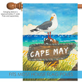 Beach Bird-Cape May Image 3