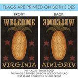 Americana Pineapple-Welcome Virginia Image 7