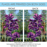 Blooming Irises Image 7