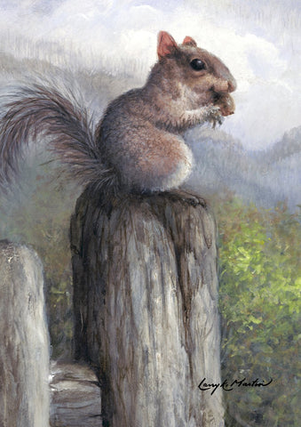 Acorn Squirrel Image 1
