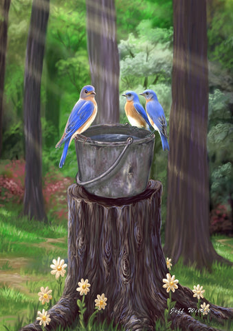 Birds on a Bucket Image 1