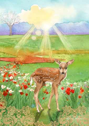 Fawn at Dawn Image 1