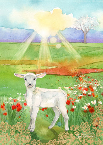 Lamb at Dawn Image 1
