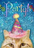 Party Cat Image 1
