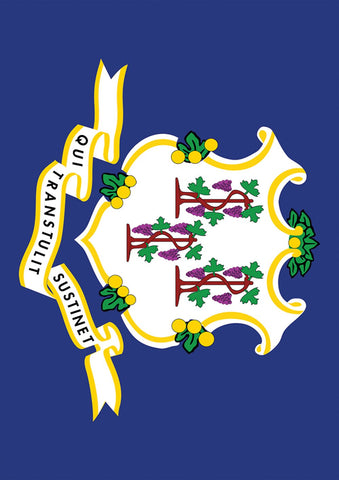 Connecticut State Flag Image 1