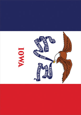 Iowa State Flag Image 1