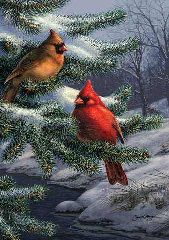 Two Cardinals Image 1