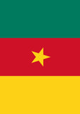 Flag of Cameroon Image 1