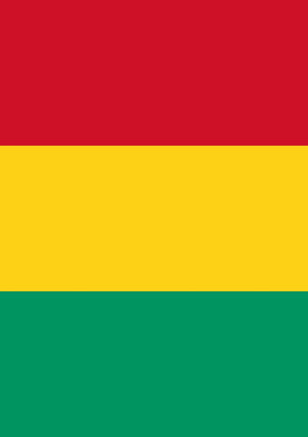 Flag of Guinea Image 1