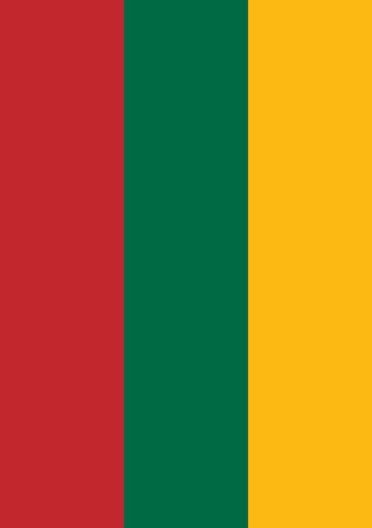 Flag of Lithuania Image 1