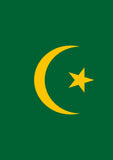 Flag of Mauritania Image 1