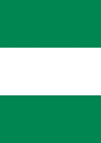 Flag of Nigeria Image 1