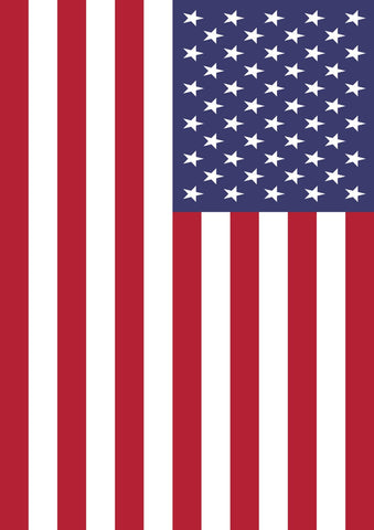 Flag of the United States Image 1