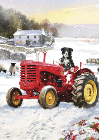 Tractor Dog Image 1