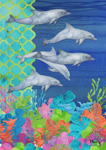 Diving Dolphins Image 1