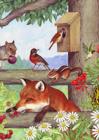 Fox and Friends Image 1