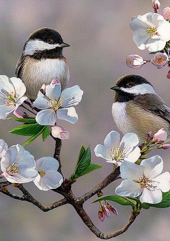 Birds and Blossoms Image 1