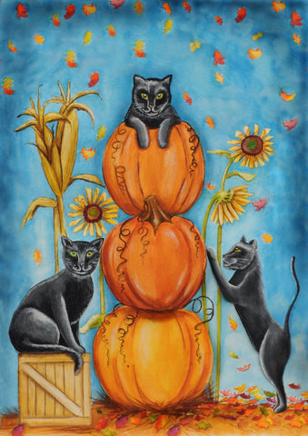 Harvest Cats Image 1