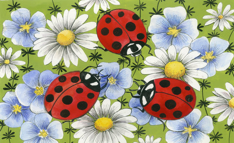 Flowers and Ladybugs Door Mat Image