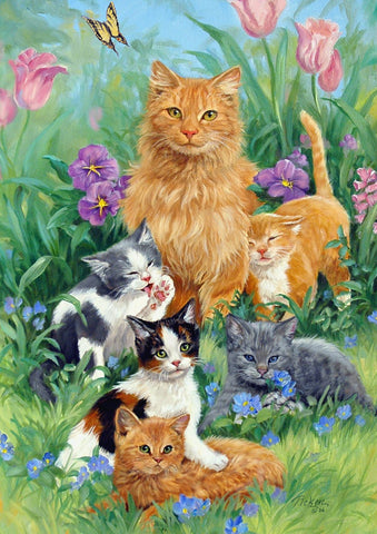 Meadow Cats Image 1
