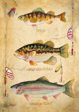Fresh Fish Image 1