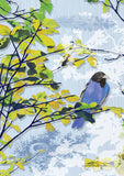 Black And Blue Bird Image 1