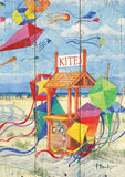 Beach Kite Stand Image 1