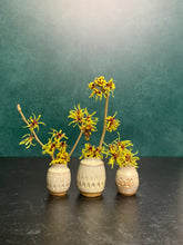 Load image into Gallery viewer, a collection of three small bud vases with witch hazel cuttings blooming in them. the vases are about 1.5-2 inches tall, wheelthrown in red stoneware, have hand carved facets and are glazed in white.