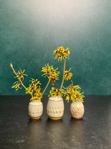 a collection of three small bud vases with witch hazel cuttings blooming in them. the vases are about 1.5-2 inches tall, wheelthrown in red stoneware, have hand carved facets and are glazed in white.