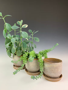set of three small planter pots with attached drain plates