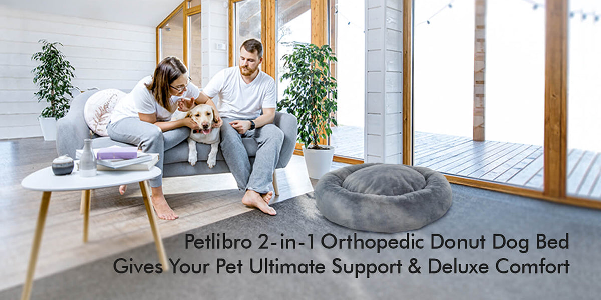 Orthopedic Foam Dog bed - Petlibro