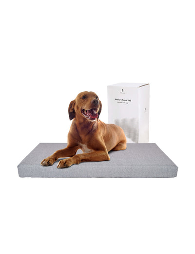 Petlibro Memory Foam Pet Bed - Petlibro