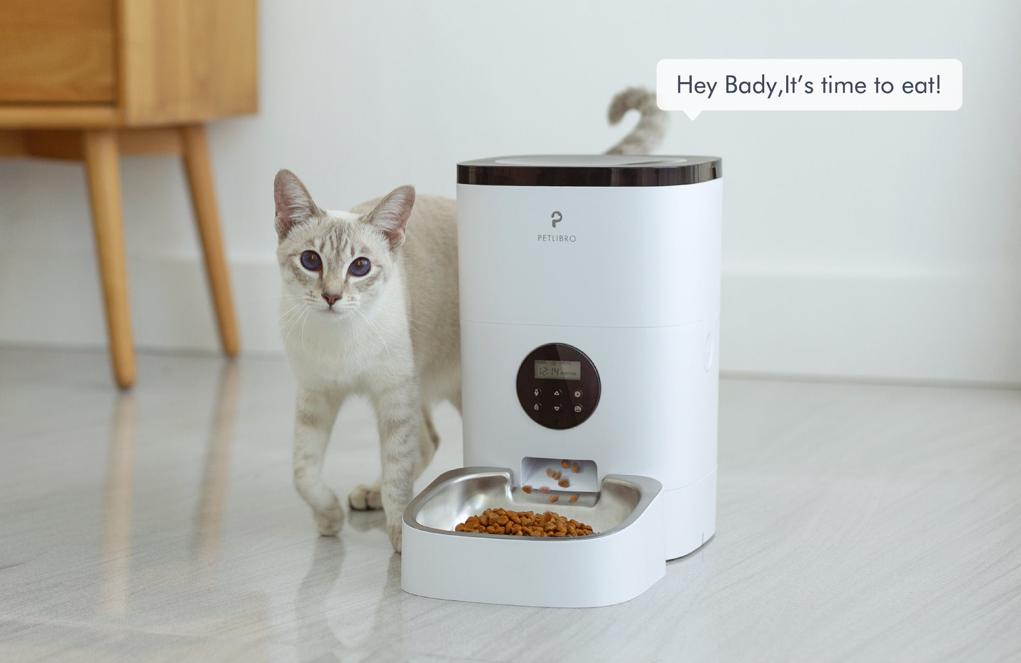 Automatic Pet Feeder Record Voice