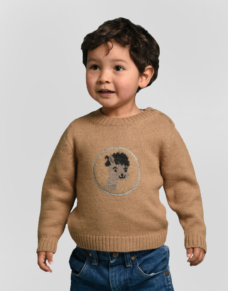 Boy Donkey Baby Alpaca Sweater