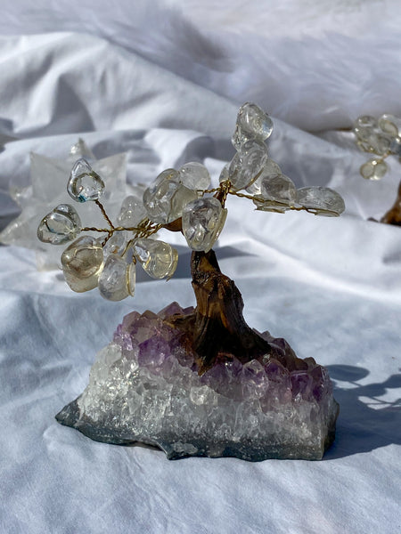 Crystal Bonsai Tree Clear Quartz on Amethyst Base