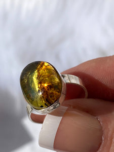 Amber Stealing Silver Oval Ring Adjustable Size