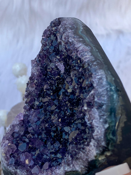 Amethyst Cluster with Black Amethyst Cut Base 398g