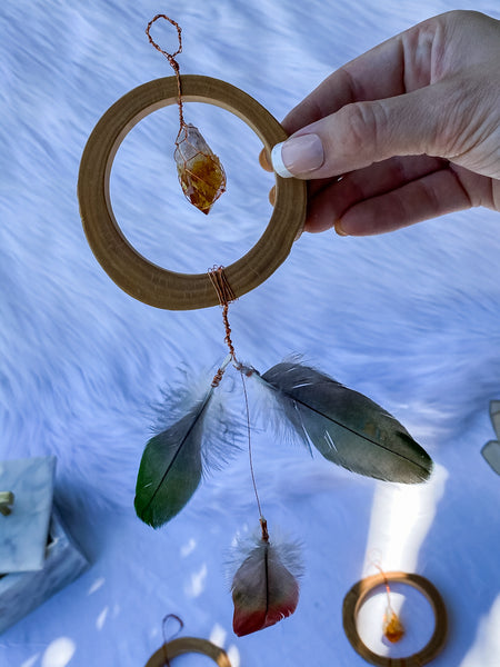 Abundance Amulet Citrine and Macaw Feather