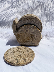 Fossil Stone Coaster Set 6 Pieces 1315g