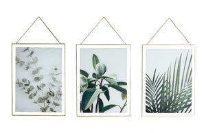 Hanging Leaf Prints on Glass So3 4in