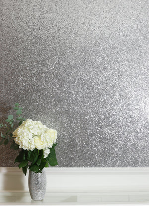 Sequin Sparkle Silver