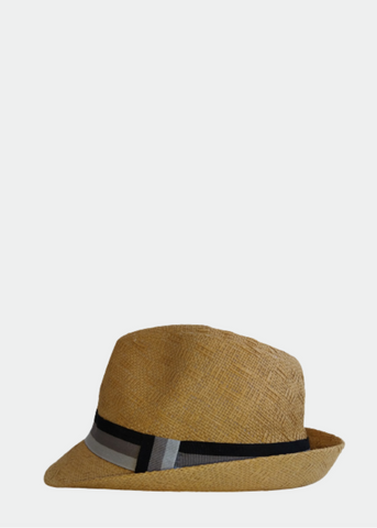 Hat Trilby On Board
