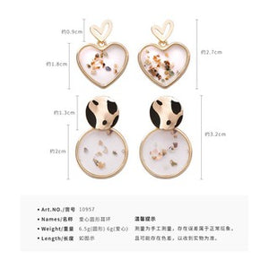 C-1273 Transparent Shell Stud Earrings