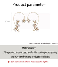 Load image into Gallery viewer, C-1468 Wild Earbone Earrings