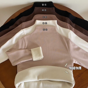 A-1022 Velvet Semi-High Collar Neck Top