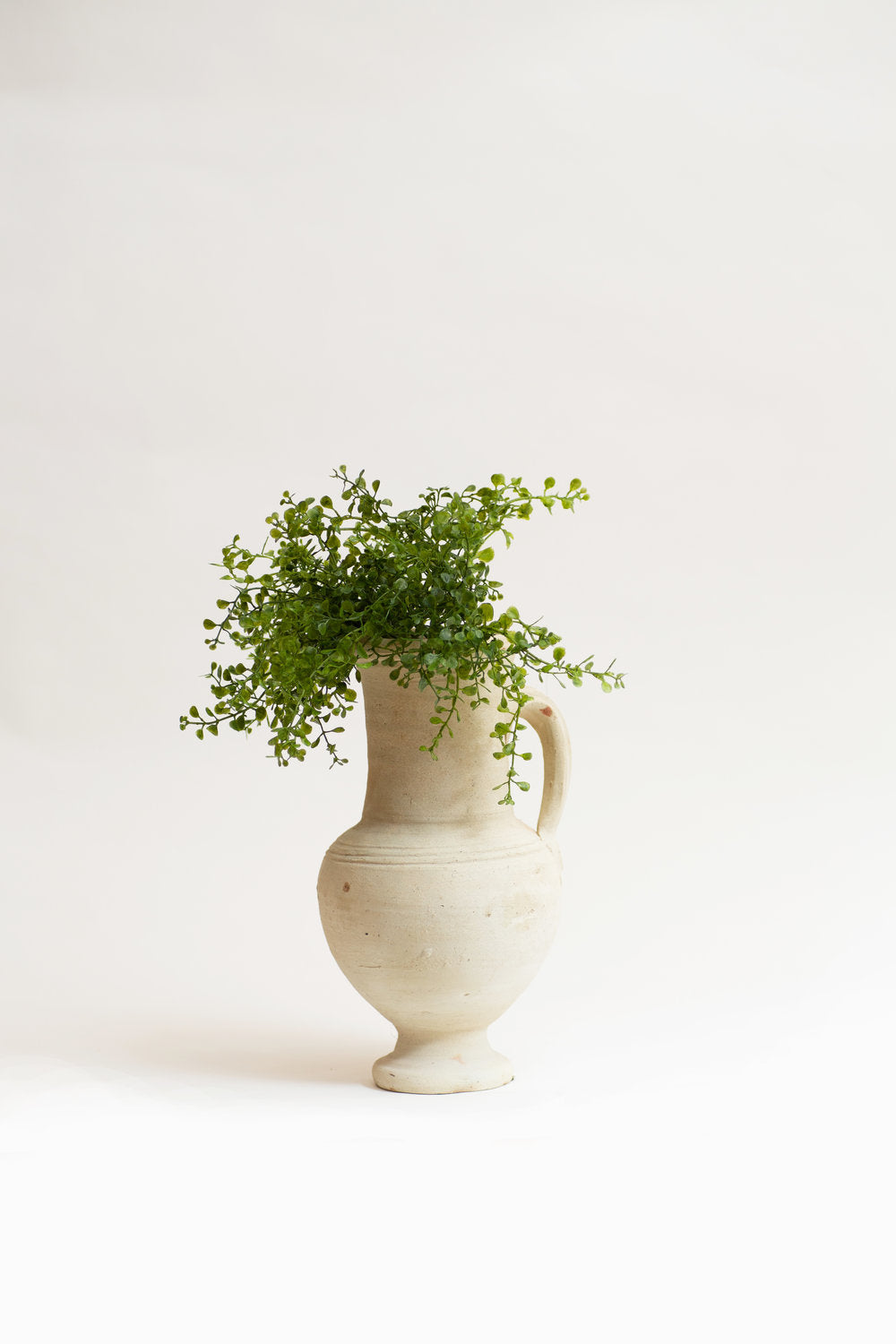 Ceramic Potter with Greenery